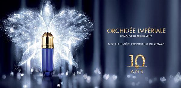 600x294_Orchidee